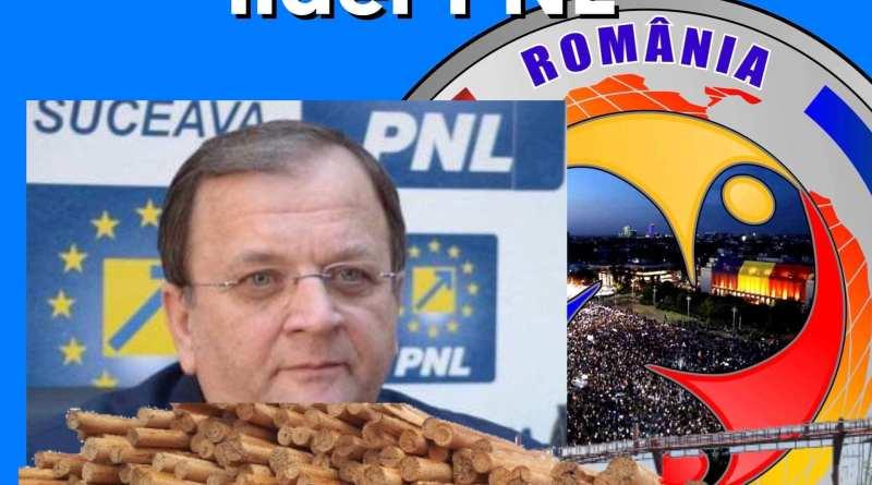 Gheorghe Flutur protejeaza Mafiei Lemnului din Bucovina?